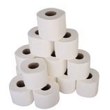 PREMIUM 2PLY LUXURY TOILET ROLL 40PK