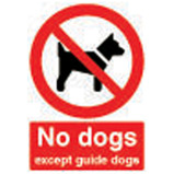 210X148MM NO DOGS EXCEPT GUIDE DOGS