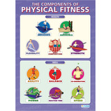 Components of Physical Fitness Poster Set