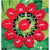 Counting Ladybugs and Number Cards