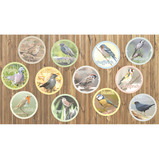 A4 Garden Birds Outdoor Board Set