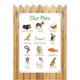 Our Pets A2 Outdoor Board