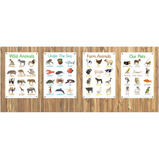 Animals A3 Outdoor Learning Boards