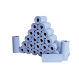 Hygiene/Couch Rolls Small Blue 2 Ply