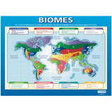 PHYSICAL GEOGRAPHY POSTER PACK OF 4